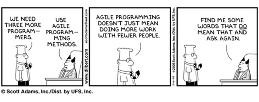 Agile Software Development Banner